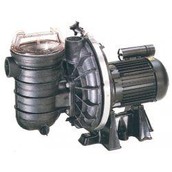 Pompe Sta-Rite 5P2R eau douce