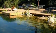 Pourquoi pas une piscine naturelle / biologique chez vous ?