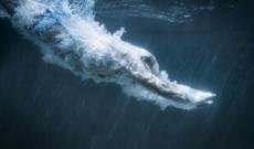 Couloir de nage : baignez-vous toute l'année !